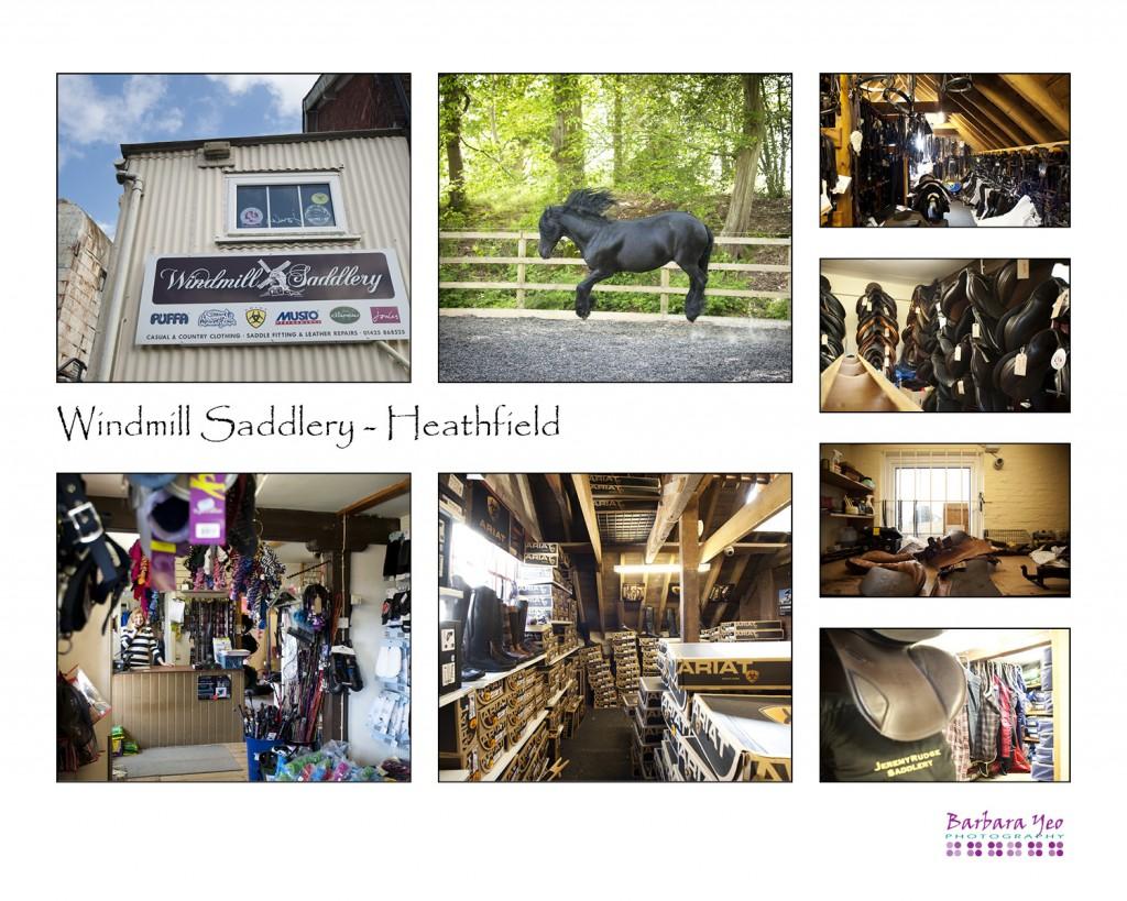 #Year of the Horse blog ~ Windmill Saddlery, Heathfield