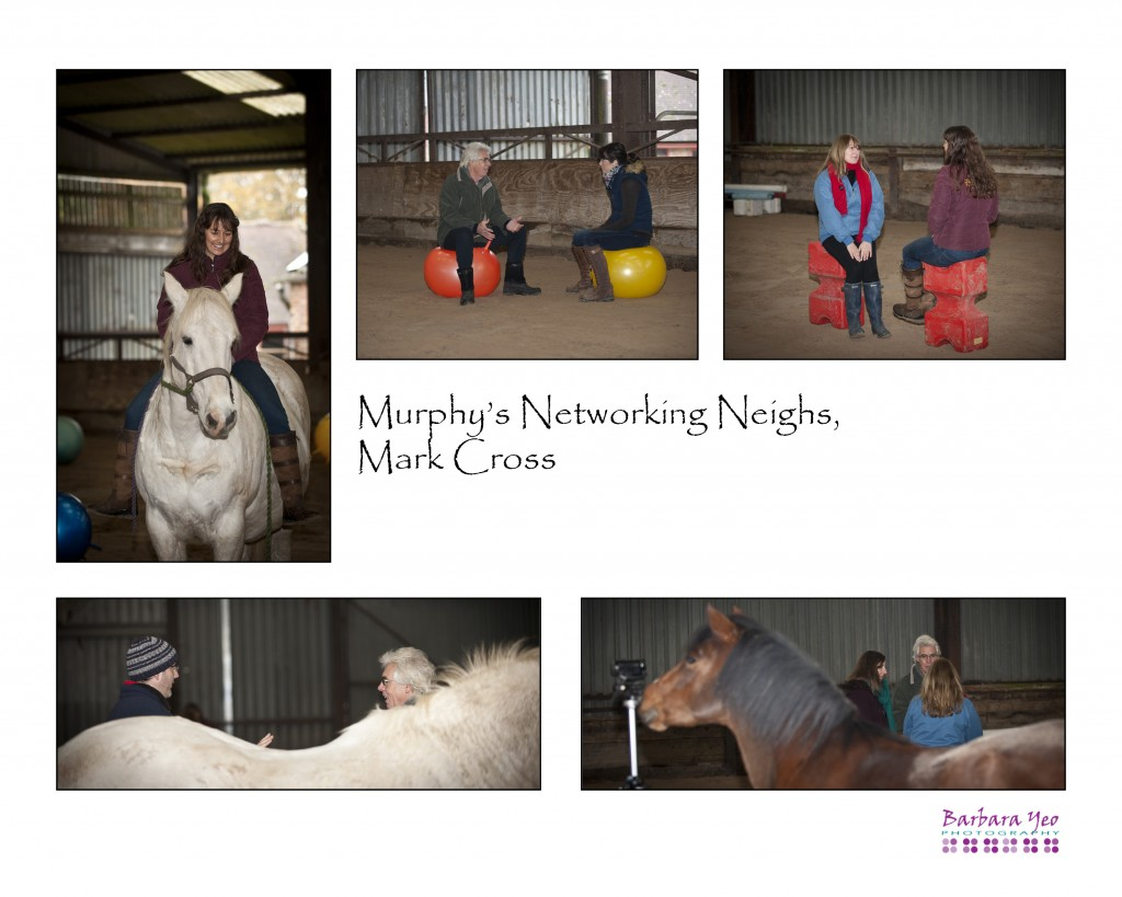 #Year of the Horse - Murphy's Networking Neighs